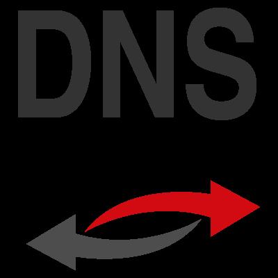 Obtain Domain Name